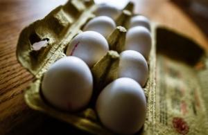 Ολλανδία: Στα 33 εκατ. ευρώ η ζημιά από το σκάνδαλο των αυγών