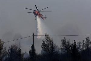 Πυρκαγιά στην Ηλεία - Απομακρύνεται ο κίνδυνος για Ροδινά-Κοστομέρα