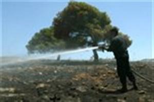Εμπρησμός από πρόθεση η φωτιά στο Αλσος Βεΐκου