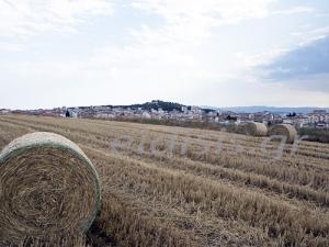 Δεν γλίτωσαν το grexit  οι αγρότες του Κιλκίς