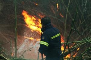 Μεγάλη πυρκαγιά στα Διάσελα Ηλείας - Υπό έλεγχο στη Λιθακιά Ζακύνθου