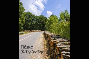ΣΥΡΙΖΑ Κιλκίς: Περισσότερη και φθηνότερη ξυλεία φέτος στους κατοίκους των ορεινών περιοχών