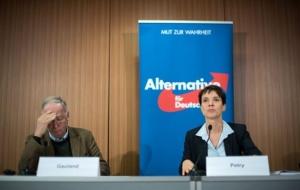 Μήνυση κατά της Μέρκελ κατέθεσε το ακροδεξιό κόμμα AfD