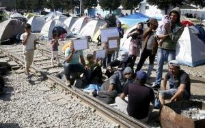 Συμπεριφορά προσφύγων