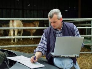 Ψηφιακή Υπηρεσία καταχώρησης Γεννήσεων Βοοειδών